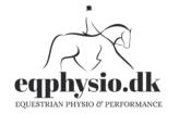 Equestrian Physio Performance